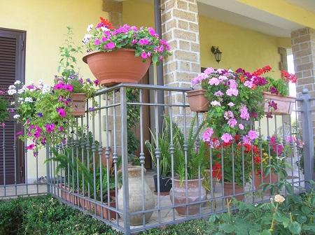 """Telese Terme: Concorso """"Balconi in…fiore"""" 10ª edizione (2005-2014)"""