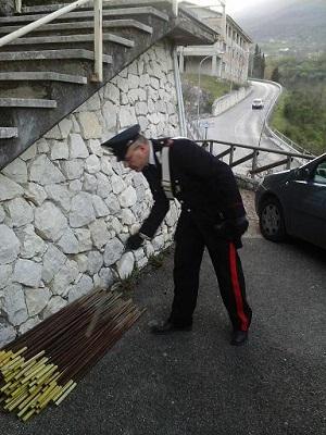 Un 40enne di Cusano Mutri è stato denunciato dai Carabinieri per un furto di alcuni paletti in ferro
