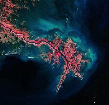 Ambiente. Cambia un'era:secondo gli scienziati siamo usciti dall'Olocene per entrare nell'Antropocene.