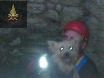 Vigili del Fuoco salvano cagnolino caduto in un pozzo