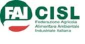 """CCNL Alimentare. Rota (Fai Cisl) : """" Federalimentare riprenda il coordinamento2"""
