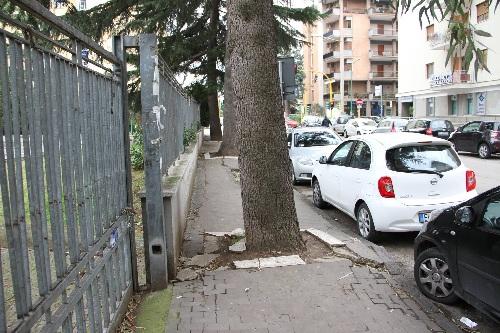 Forza Italia Giovani Benevento: richiesta di intervento in via Calandra.