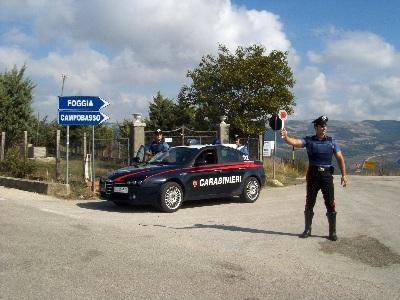 San Bartolomeo in Galdo, sventati due furti in aziende agricole