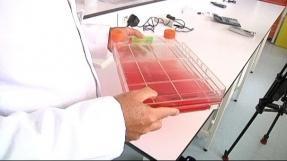 Come trattare un fungo su unghie di piedi