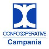 Benevento, servizi museali alle cooperative