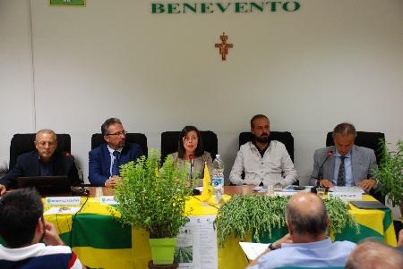 """Si è concluso il """"Progetto Do.di.S – Dolci di Stevia del Sannio"""": """"Ora la creazione di una filiera ad hoc"""""""