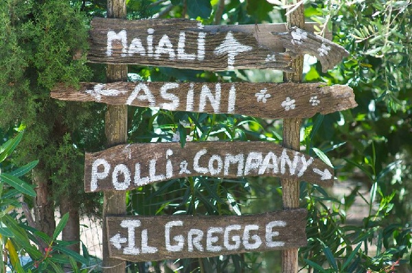 Agriturismo, è boom anche a Pasqua in Campania