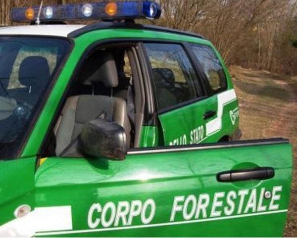 Dalla Provincia di Benevento anticipi di cassa per mensilità arretrate ai forestali