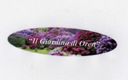 """Mastella si domanda perchè non si è salvato dalla sfratto l'Associazione """"Il giardino di Oren"""" ?"""