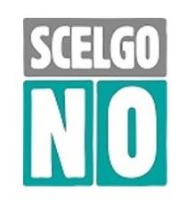 """Referendum Costituzionale. Costituito il comitato provinciale: """"Scelgo No – Sannio"""""""