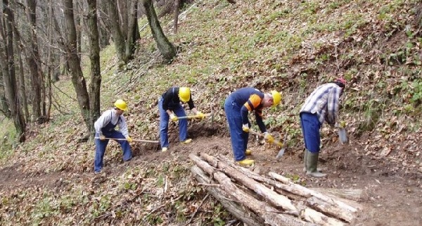 Garantite le paghe pregresse agli operai forestali e la normalizzazione delle procedue di pagamento.
