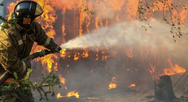 Incendi Boschivi Fioravante Bosco (Uil): Radicare la coscienza ambientale