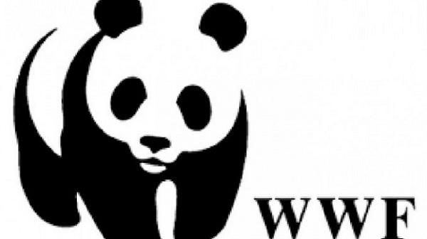 Stagione Venatoria: il Wwf lancia appello ai Prefetti ed al Presidente della Regione Campania