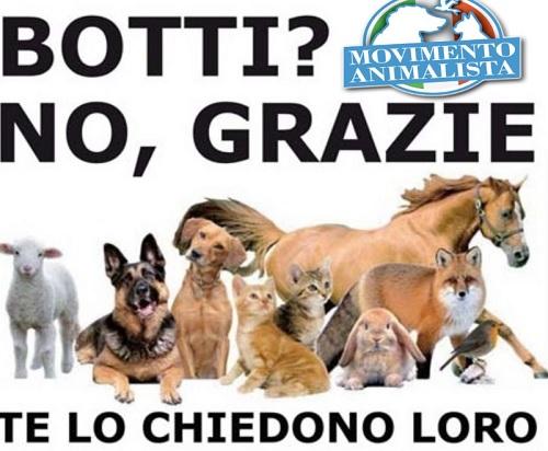 """""""Botti di fine anno"""" intervento del Movimento Animalista di Benevento"""
