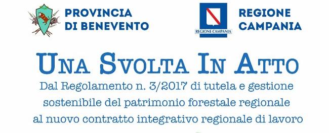 Forestazione in Campania: Se ne parlerà in una discussione pubblica promossa dalla Provincia di Benevento.