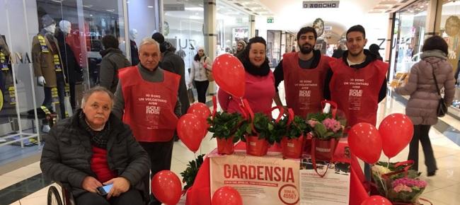 """AISM. Campagna contro la Sclerosi Multipla, """"Benvenuta Gardensia""""il presidente Ugo Dell'Unto ringrazia."""