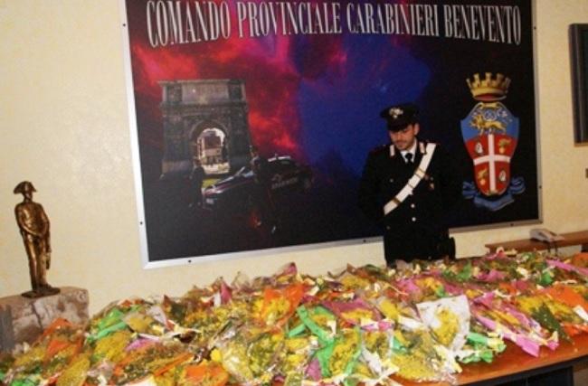 Benevento: Giornata della Donna, i Carabinieri sequestrano 80 Kg di mimosa e segnalano 7 venditori abusivi.