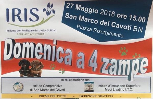 """Il 27 Maggio a San Marco dei Cavoti """"Domenica a 4 zampe""""."""