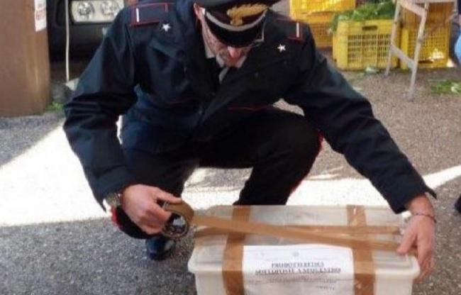 Carabinieri Forestale di Benevento: effettuata verifica della tracciabilità e l'etichettatura di prodotti alimentari.