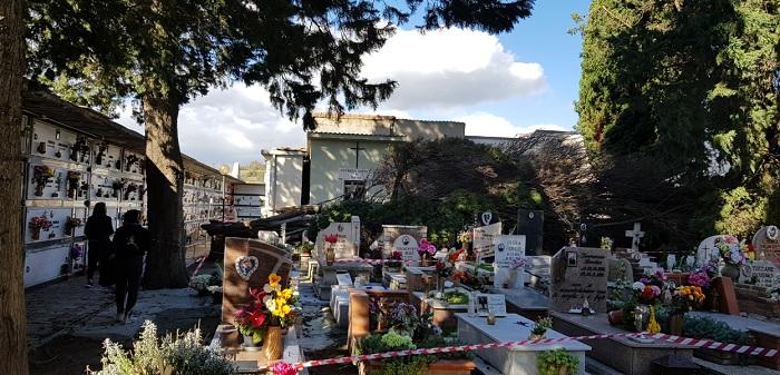 Pietrelcina maltempo: la caduta di un pino distrugge alcune tombe.