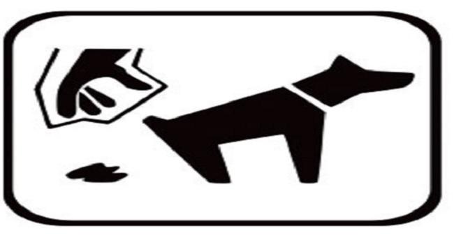 Benevento. Stretta della municipale sulla detenzione e deiezione cani