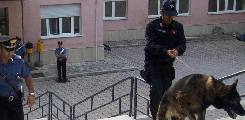 San Bartolomeo in Galdo:attività antidroga dei Carabinieri presso un Istituto Scolastico