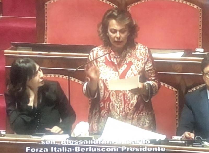La senatrice Lonardo interroga il Ministro De Micheli sulle strade di Benevento