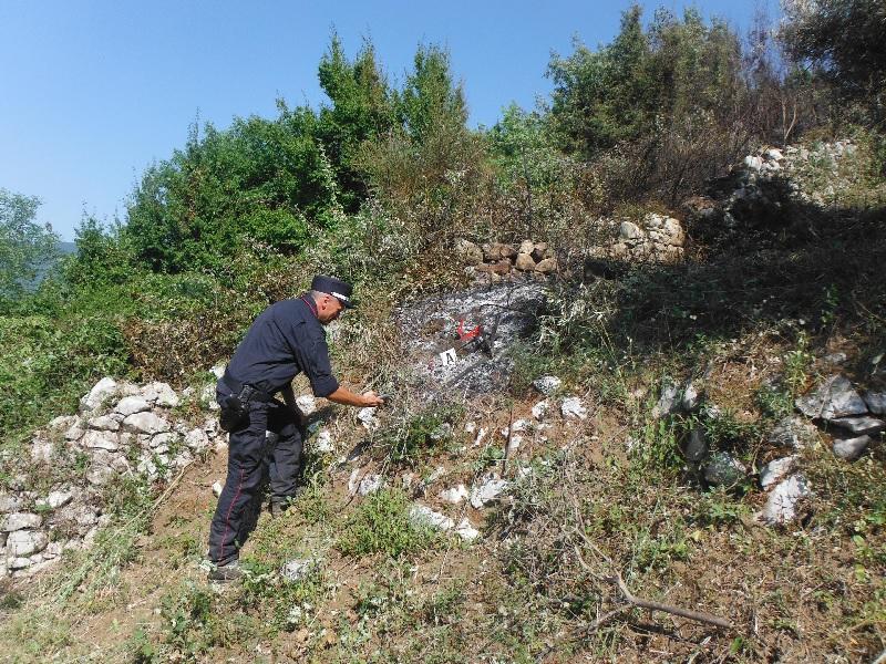 Sant'Agata de' Goti. Carabinieri Forestali denunciano due persone per incendio boschivo colposo