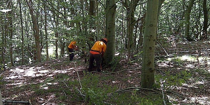 "Forestali Fai Cisl, Flai Cgil e Uila Uil Campania : "" Entro fine Luglio primo acconto fondi 2020″"