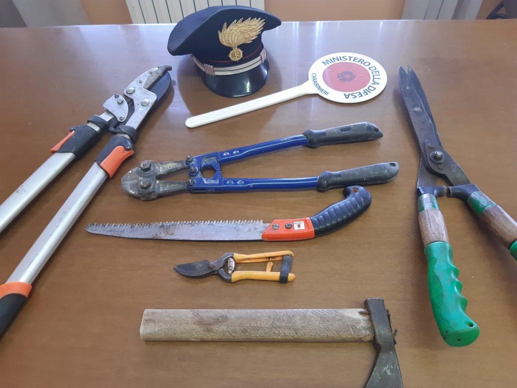 Buonalbergo, sventati furti dai Carabinieri grazie alla collaborazione ed alle segnalazioni dei cittadini
