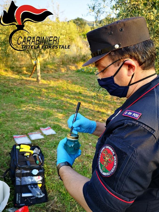 Avvelenamento delle acque di un pozzo, indagano i Carabinieri