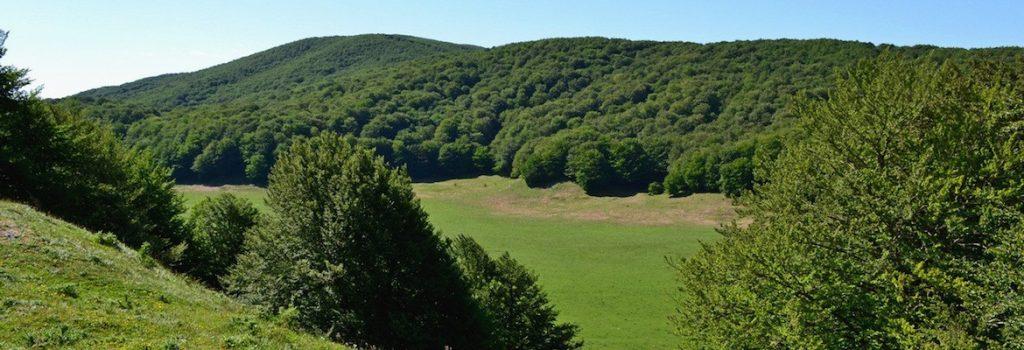 L'Ente Parco Regionale del Taburno Camposauro entra in Campania>Artecard