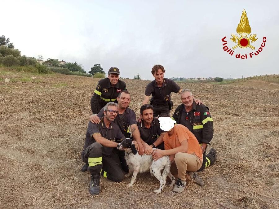 Fragneto Monforte. Vigili del Fuoco salvano cane setter