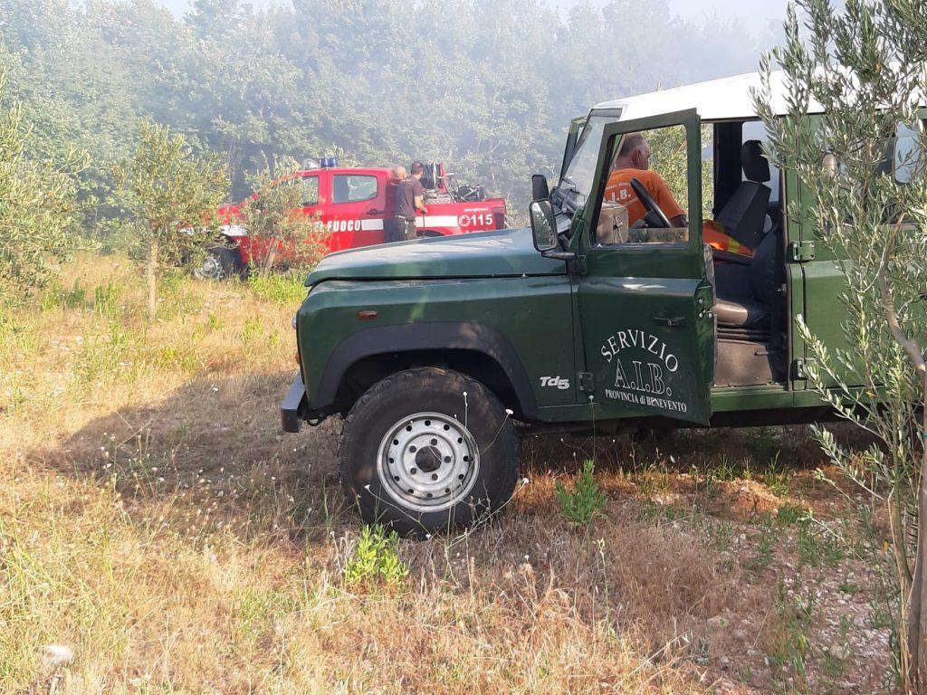 Sono 51 gli interventi per l'antincendio boschivo della Provincia di Benevento