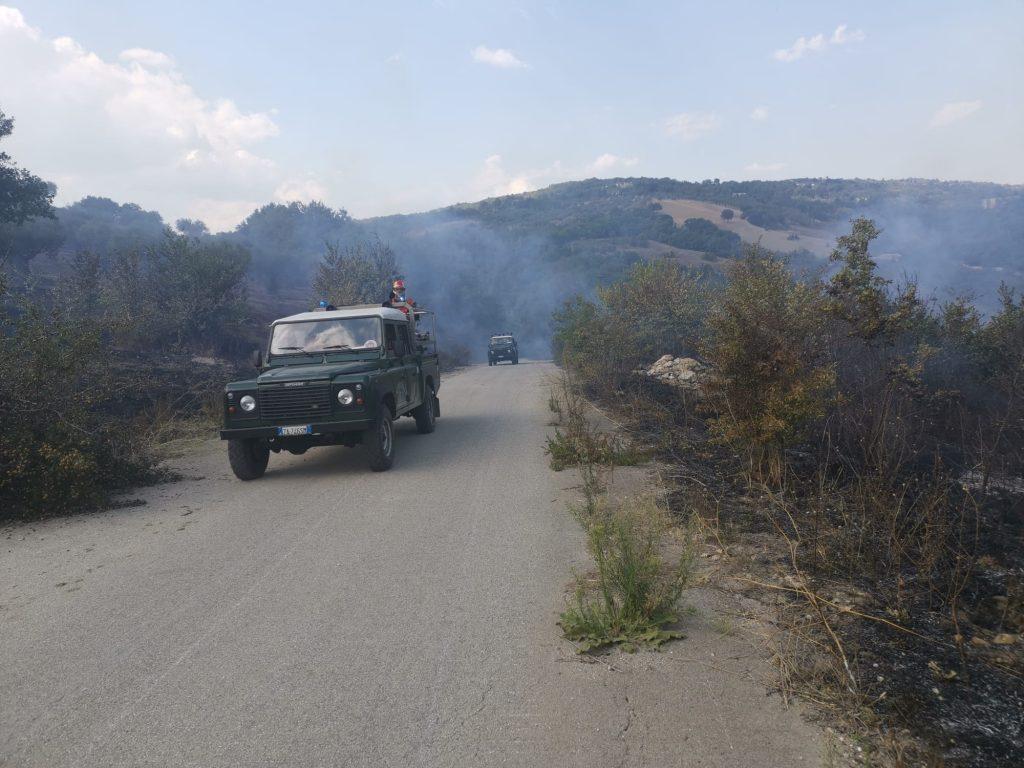 4 ettari di vegetazione in fumo in C.da Acquafredda di Pietrelcina