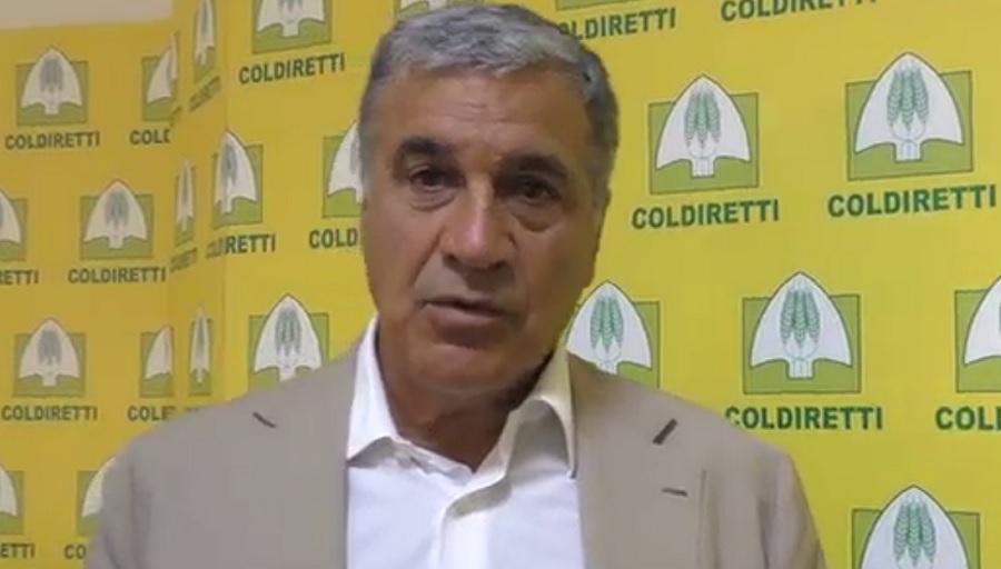 """Rummo attacca Luigi Barone sul biodigestore: """"Pronti a delocalizzare l'azienda"""" ed incassa l'appoggio di Coldiretti."""
