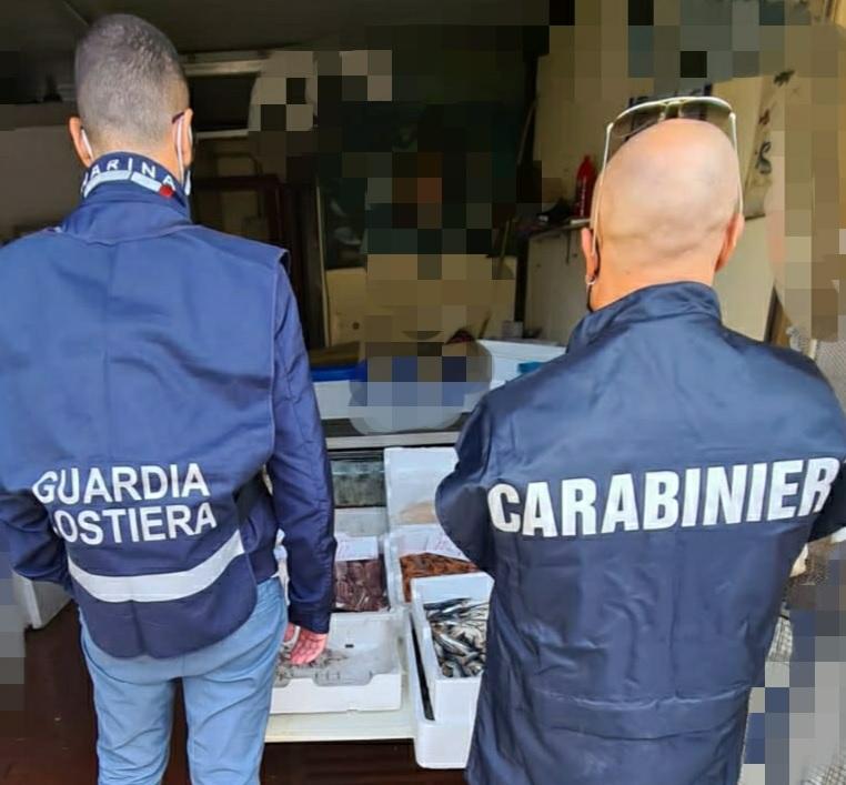 Benevento. Sequestrati 100 Kg di pesce per assenza di documenti appropriati di tracciabilità