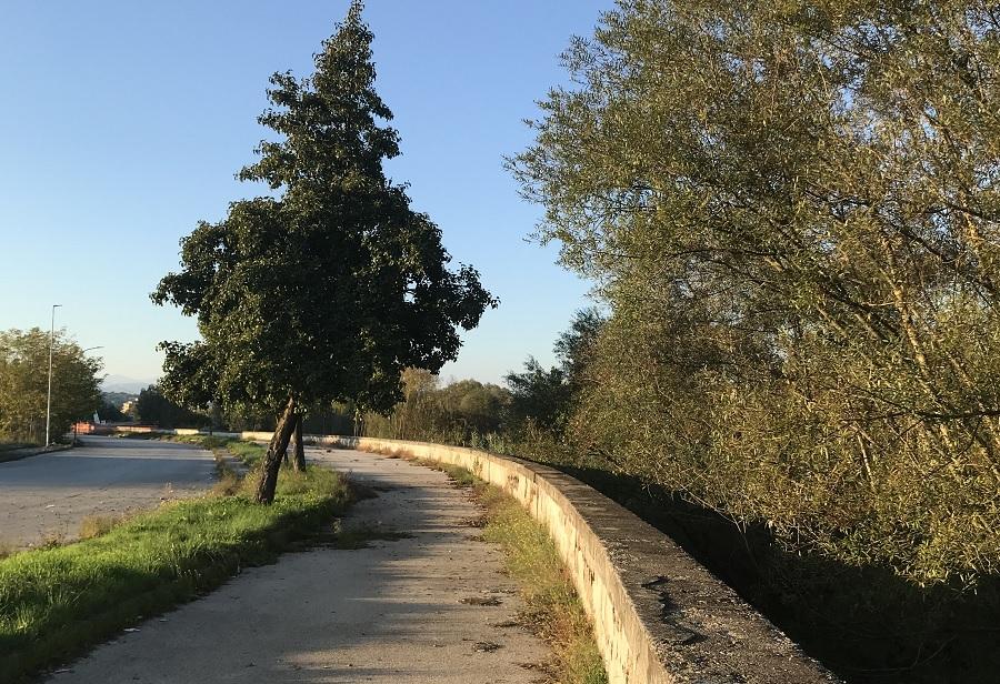 Manutenzione Alvei fluviali: si parte domani con Lungo Sabato Bacchelli