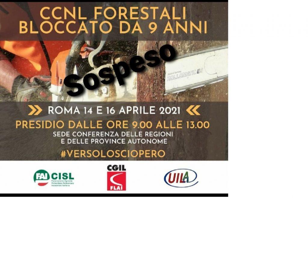 Forestali. Rinnovo Ccnl fermo, 14 e 16 aprile manifestazioni a Roma, il 30 lo sciopero