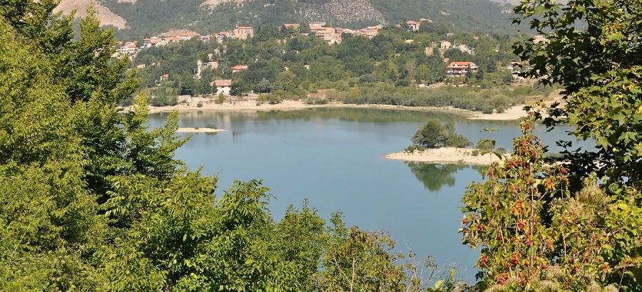 Rubano numerose e pregiate piante di Faggio nel Parco Regionale del Matese: divieto di dimora in 20 comuni per 3 persone