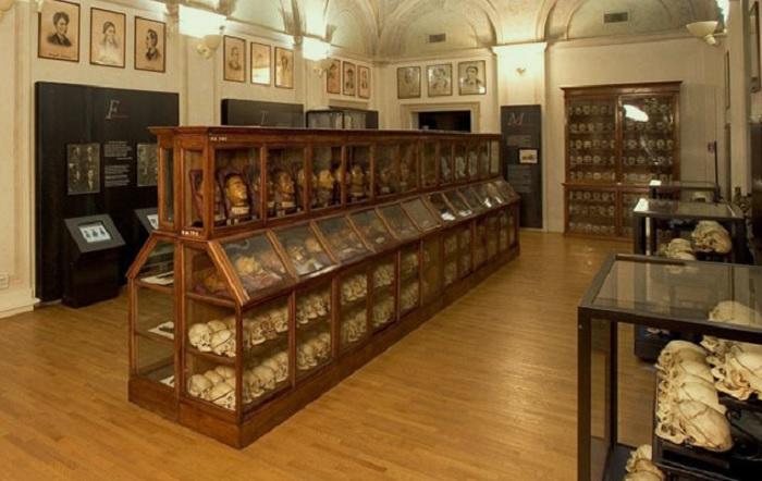 Museo Lombroso, Lonardo: chiediamo l'immediata chiusura