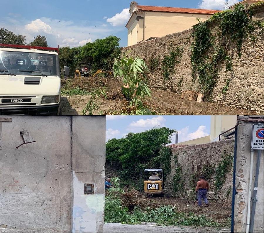 Taglio alberi in Via de Nicastro, interviene la Polizia Municipale che interessa anche le altre istituzioni.
