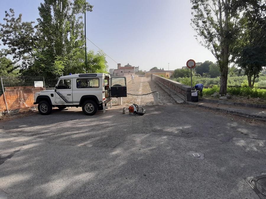 Il servizio forestazione della Provincia provvede alla manutenzione del verde urbano a Benevento